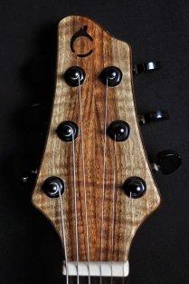 chitarra-elettrica-nadir-paletta