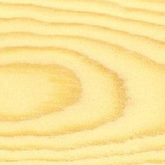 abete-rosso-liuteria-cocopelli